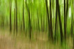 Αφηρημένο πράσινο δάσος Στοκ εικόνα με δικαίωμα ελεύθερης χρήσης