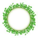 Αφηρημένο πράσινο διανυσματικό μόριο πλαισίων κύκλων χλόης Στοκ φωτογραφία με δικαίωμα ελεύθερης χρήσης