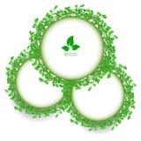Αφηρημένο πράσινο διανυσματικό μόριο πλαισίων κύκλων χλόης Στοκ Φωτογραφία