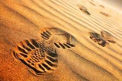 αφηρημένο πρότυπο ερήμων Στοκ Εικόνες