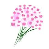 αφηρημένο ροζ ανθοδεσμών Στοκ Εικόνες