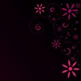 αφηρημένο ροζ λουλουδ&iot Στοκ Εικόνες