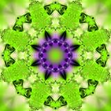 αφηρημένο ρόδινο υπόβαθρο με μια κυκλική διακόσμηση υπό μορφή φύλλου και λουλουδιού στοκ φωτογραφία με δικαίωμα ελεύθερης χρήσης