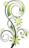αφηρημένο στοιχείο floral διανυσματική απεικόνιση