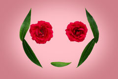Αφηρημένο σύμβολο καλοκαιριού ή άνοιξης - σκιαγραφία του προσώπου από τα φύλλα και τα λουλούδια στο ρόδινο υπόβαθρο απομονωμένο έ Στοκ Εικόνες