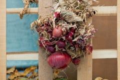 αφηρημένο σύνολο σχεδίου ανασκοπήσεων φθινοπώρου Κόκκινα πλαισιωμένα κρεμμύδια στους φράκτες Στοκ φωτογραφία με δικαίωμα ελεύθερης χρήσης