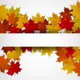 Αφηρημένο υπόβαθρο με τα ζωηρόχρωμα φύλλα φθινοπώρου Απεικόνιση αποθεμάτων