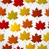 Αφηρημένο υπόβαθρο με τα ζωηρόχρωμα φύλλα φθινοπώρου Διανυσματική απεικόνιση