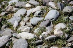 Αφηρημένο υπόβαθρο με τα χαλίκια - στρογγυλές πέτρες θάλασσας στοκ φωτογραφία