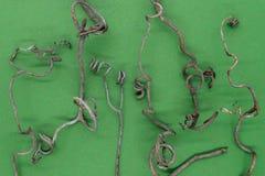 Αφηρημένο υπόβαθρο του ξηρού σταφυλιού που κατσαρώνουν tendrils στοκ φωτογραφίες με δικαίωμα ελεύθερης χρήσης
