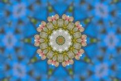 αφηρημένο υπόβαθρο του floral σχεδίου ενός καλειδοσκόπιου Στοκ Εικόνα