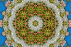 αφηρημένο υπόβαθρο του floral σχεδίου ενός καλειδοσκόπιου Στοκ Φωτογραφία