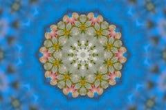 αφηρημένο υπόβαθρο του floral σχεδίου ενός καλειδοσκόπιου Στοκ Φωτογραφίες