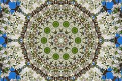αφηρημένο υπόβαθρο του floral σχεδίου ενός καλειδοσκόπιου Στοκ Εικόνες