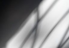 Αφηρημένο υπόβαθρο των μαλακών γραμμών σκιών Στοκ Φωτογραφία