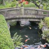 Αφηρημένο υπόβαθρο φύσης ή χαλάρωσης με τα μεγάλα ζωηρόχρωμα ιαπωνικά ψάρια κυπρίνων koi στοκ εικόνες
