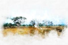 Αφηρημένο υπόβαθρο χρωμάτων απεικόνισης watercolor τοπίων δέντρων διανυσματική απεικόνιση