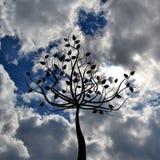 Αφηρημένο φυλλώδες δέντρο πέρα από τον μπλε νεφελώδη ουρανό Στοκ Εικόνες