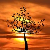 Αφηρημένο φυλλώδες δέντρο στην ανατολή Στοκ εικόνες με δικαίωμα ελεύθερης χρήσης