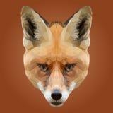 Αφηρημένο χαμηλό πολυ σχέδιο αλεπούδων Στοκ φωτογραφία με δικαίωμα ελεύθερης χρήσης