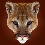 Αφηρημένο χαμηλό πολυ σχέδιο Puma Στοκ Φωτογραφία