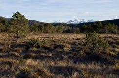 Αφηρημένο χειμερινό βουνό Στοκ Εικόνες