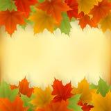 Αφηρημένο χρυσό πλαίσιο φθινοπώρου από τα φύλλα σφενδάμου διανυσματική απεικόνιση