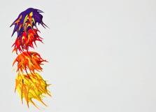 αφηρημένο χρώμα υγρό Στοκ Εικόνα