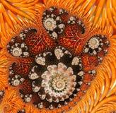 Αφηρημένο ψηφιακό έργο τέχνης Πρότυπα της φύσης Μαγικά κοχύλια στοκ φωτογραφία με δικαίωμα ελεύθερης χρήσης