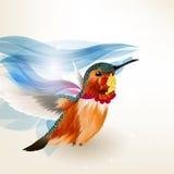 Αφηρημένο όμορφο διανυσματικό υπόβαθρο με το ρεαλιστικό βουίζοντας πουλί Στοκ εικόνα με δικαίωμα ελεύθερης χρήσης