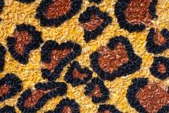 Αφηρημένο όμορφο υπόβαθρο από ένα σύνολο λουλουδιών Στοκ φωτογραφία με δικαίωμα ελεύθερης χρήσης