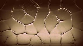 Αφηρημένο όμορφο υπόβαθρο γραμμών Ζωηρόχρωμη ταπετσαρία γραμμών Υπόβαθρα έργου τέχνης Μυστικός φωτισμός Στοκ φωτογραφίες με δικαίωμα ελεύθερης χρήσης