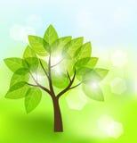 Αφηρημένο δέντρο Στοκ Εικόνα