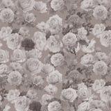 αφηρημένο floral πρότυπο ανασκόπ&e Στοκ Φωτογραφία