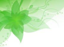 Αφηρημένο floral υπόβαθρο άνοιξη διανυσματική απεικόνιση