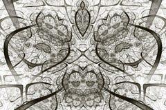αφηρημένο fractal ανασκόπησης Ιδιαίτερα λεπτομερές υπόβαθρο στους γκρίζους τόνους με τα στοιχεία των σπειρών, των γραμμών και των διανυσματική απεικόνιση