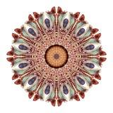 Αφηρημένο mandala Watercolor Κυκλικό σχέδιο των φτερών που απομονώνεται στο άσπρο υπόβαθρο Στοκ εικόνα με δικαίωμα ελεύθερης χρήσης