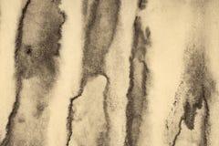Αφηρημένο watercolor στη σύσταση εγγράφου ως υπόβαθρο Στη σέπια που τονίζεται r στοκ φωτογραφία με δικαίωμα ελεύθερης χρήσης