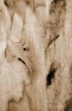 Αφηρημένο watercolor στη σύσταση εγγράφου ως υπόβαθρο Στον τόνο σεπιών Στοκ Φωτογραφίες