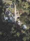 Αφθονημένο εργοστάσιο στη μέση του δάσους στοκ εικόνες με δικαίωμα ελεύθερης χρήσης