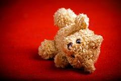 Το Teddy αντέχει Στοκ φωτογραφία με δικαίωμα ελεύθερης χρήσης