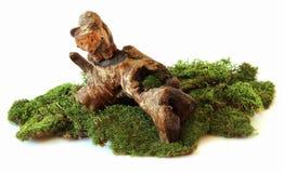 Αφορτε το driftwood, που χαράζεται στο ξύλινο γλυπτό, σύνθεση, στο εναλλασσόμενο ρεύμα Στοκ εικόνες με δικαίωμα ελεύθερης χρήσης
