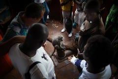 Αφρική, Sierra Leone, Φρητάουν Στοκ εικόνες με δικαίωμα ελεύθερης χρήσης