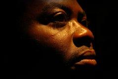αφρικανικά Στοκ Εικόνες
