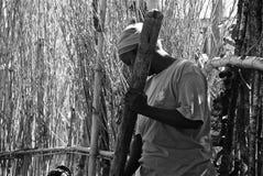 αφρικανικές γυναίκες Στοκ εικόνα με δικαίωμα ελεύθερης χρήσης
