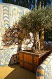 Αφρικανικές καλύβες αργίλου στο σαφάρι ζωολογικών κήπων, Dvur Kralove Στοκ Φωτογραφίες