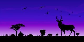 αφρικανική άγρια φύση σειράς φύσης ανασκόπησης ενάντια ανασκόπησης μπλε σύννεφων πεδίων άσπρο σε wispy ουρανού φύσης χλόης πράσιν Στοκ φωτογραφία με δικαίωμα ελεύθερης χρήσης