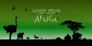 αφρικανική άγρια φύση σειράς φύσης ανασκόπησης ενάντια ανασκόπησης μπλε σύννεφων πεδίων άσπρο σε wispy ουρανού φύσης χλόης πράσιν Στοκ Εικόνες