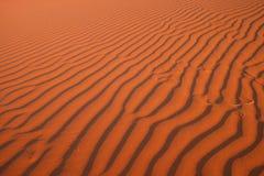 αφρικανική έρημος Στοκ Εικόνα