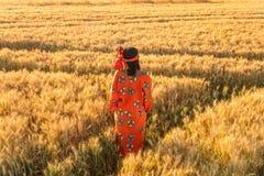 Αφρικανική γυναίκα στα παραδοσιακά ενδύματα που στέκονται σε έναν τομέα της συγκομιδής Στοκ Εικόνες